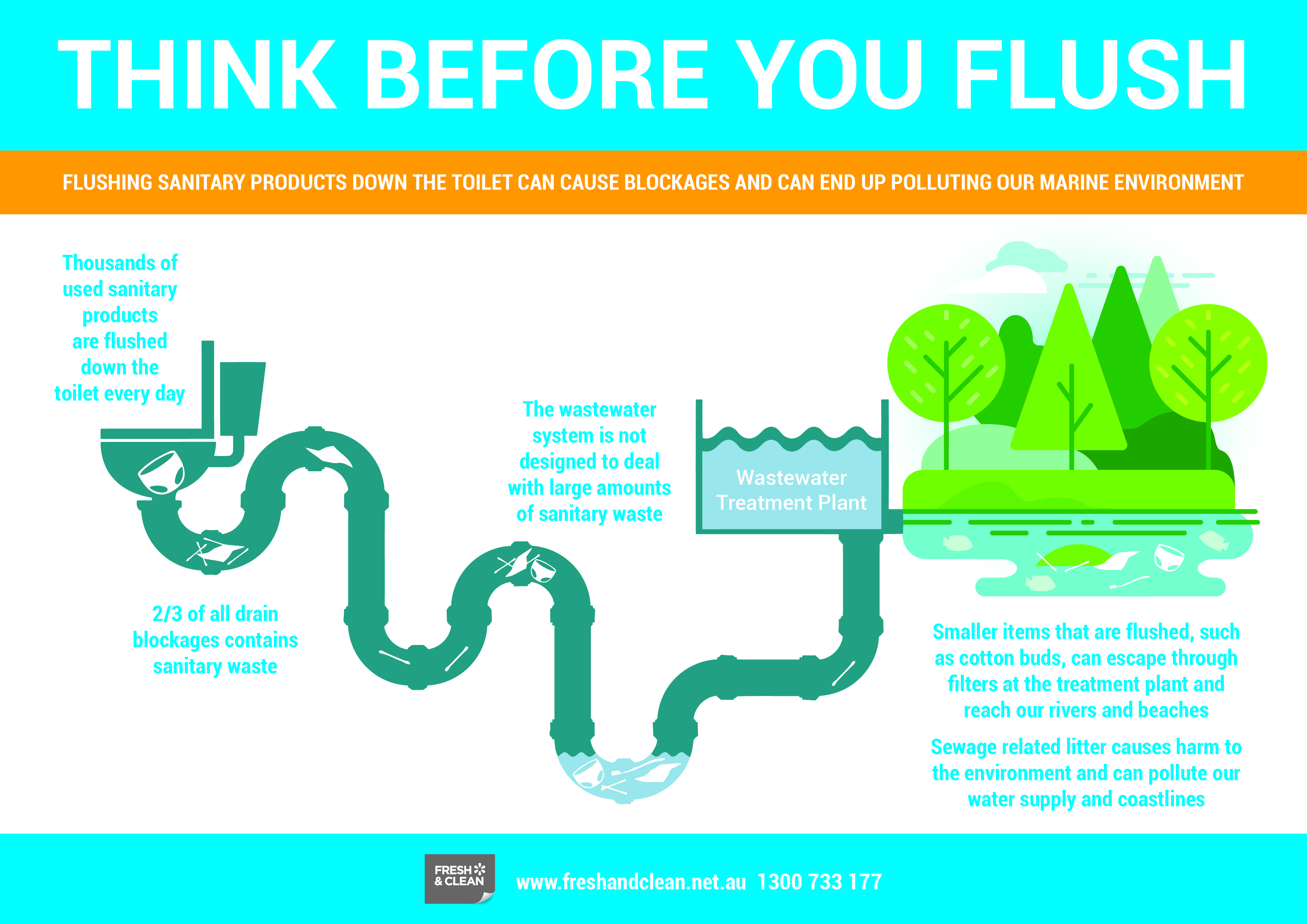Think Before You Flush Poster & Infographic - Fresh & Clean