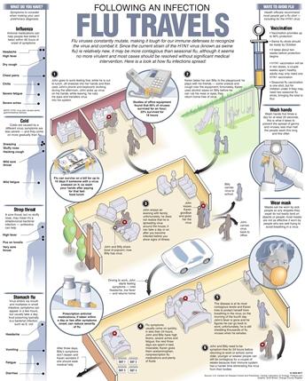 flu travels chart